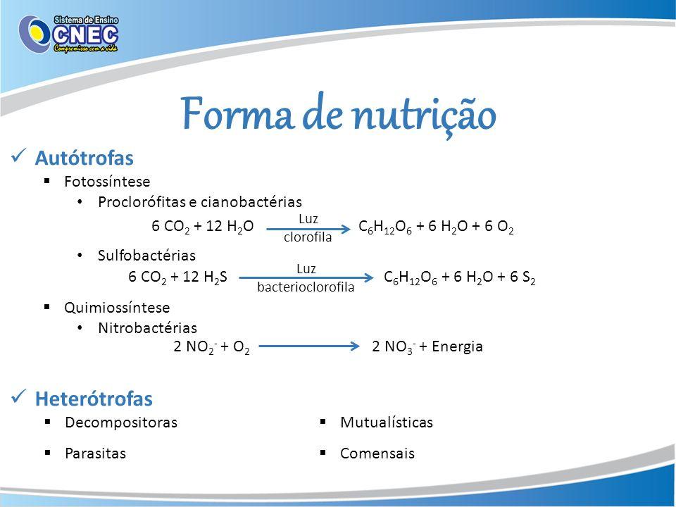 Forma de nutrição Autótrofas Heterótrofas Fotossíntese