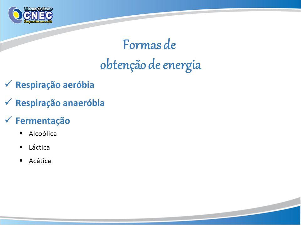 Formas de obtenção de energia