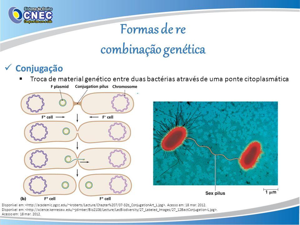 Formas de re combinação genética