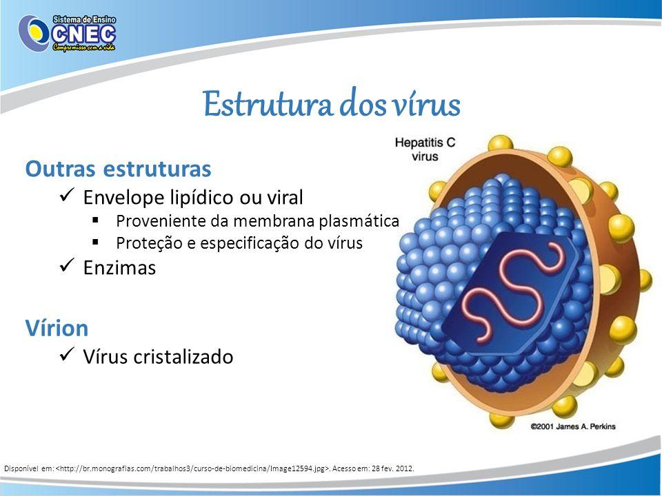 Estrutura dos vírus Outras estruturas Vírion