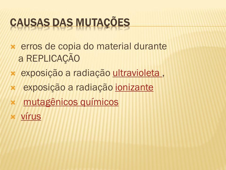 CAUSAS DAS MUTAÇÕES erros de copia do material durante a REPLICAÇÃO
