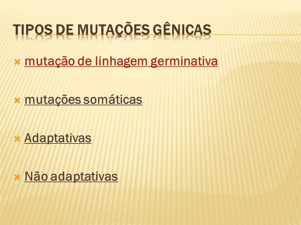 TIPOS DE MUTAÇÕES GÊNICAS