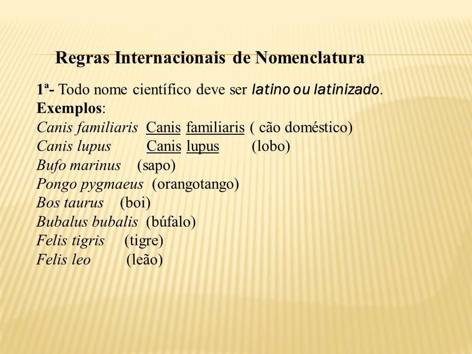 Regras Internacionais de Nomenclatura