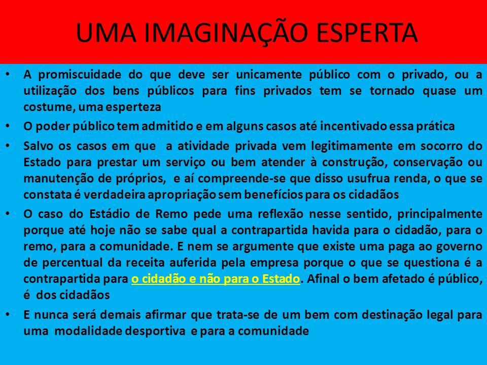 UMA IMAGINAÇÃO ESPERTA