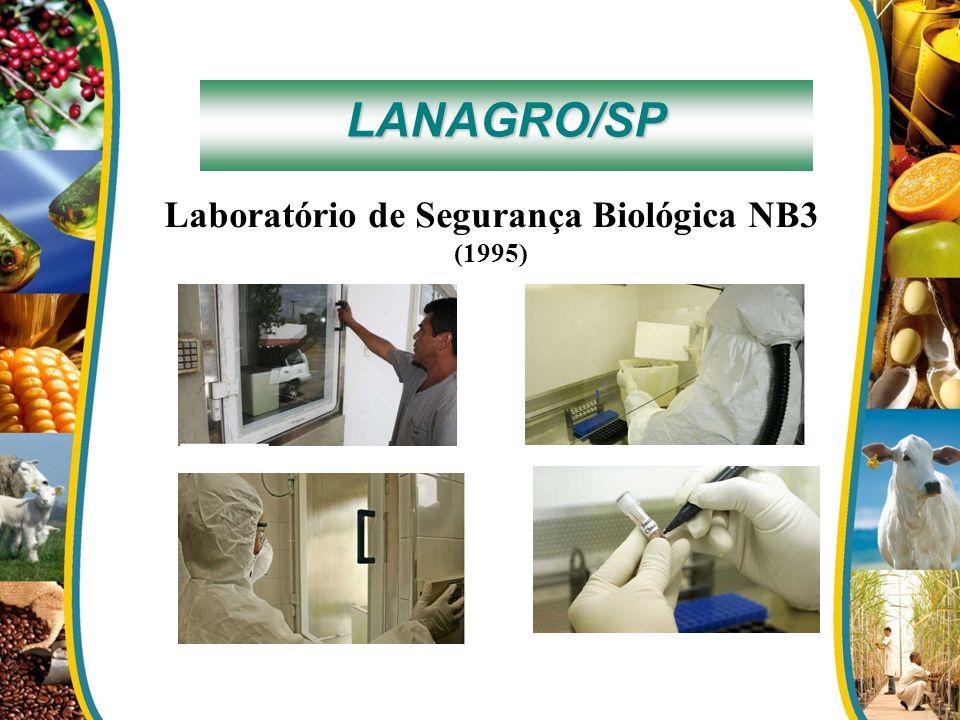Laboratório de Segurança Biológica NB3 (1995)