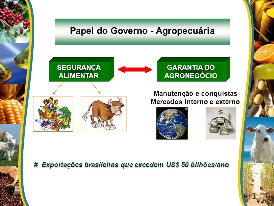 Papel do Governo - Agropecuária