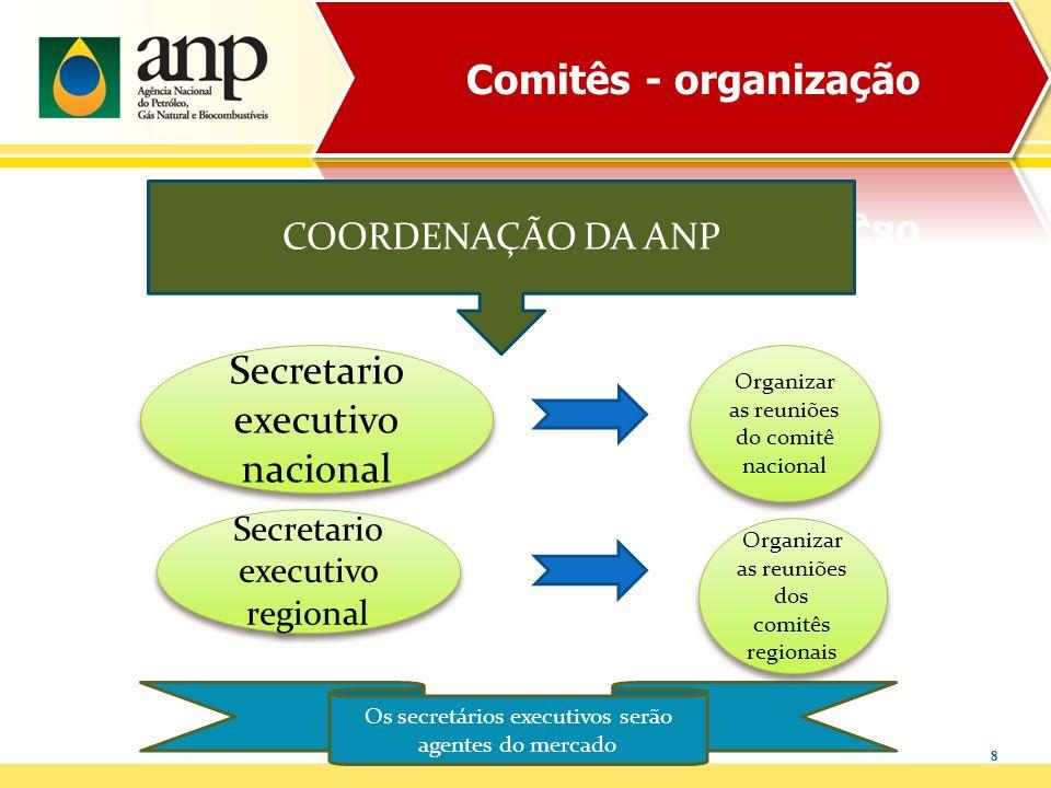 Secretario executivo nacional
