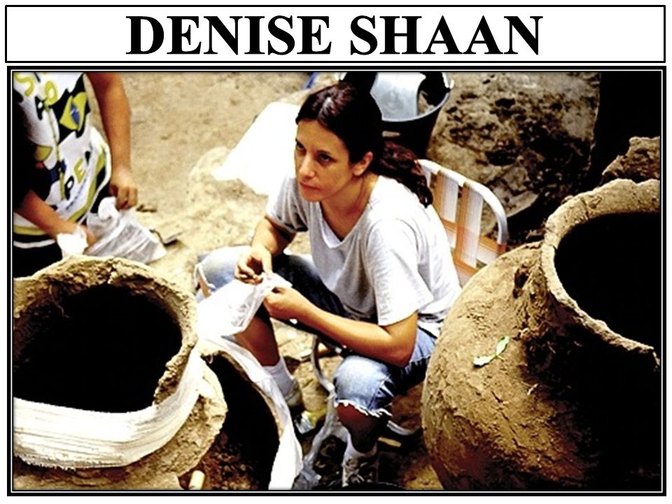 DENISE SHAAN