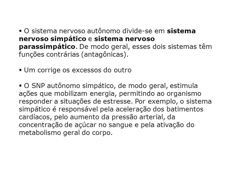 O sistema nervoso autônomo divide-se em sistema nervoso simpático e sistema nervoso parassimpático. De modo geral, esses dois sistemas têm funções contrárias (antagônicas).