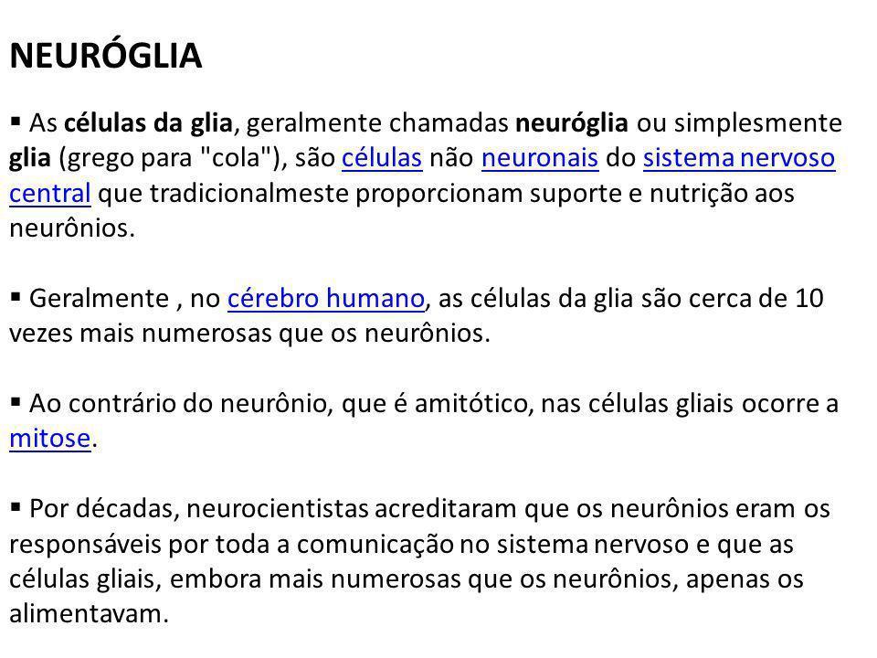 NEURÓGLIA
