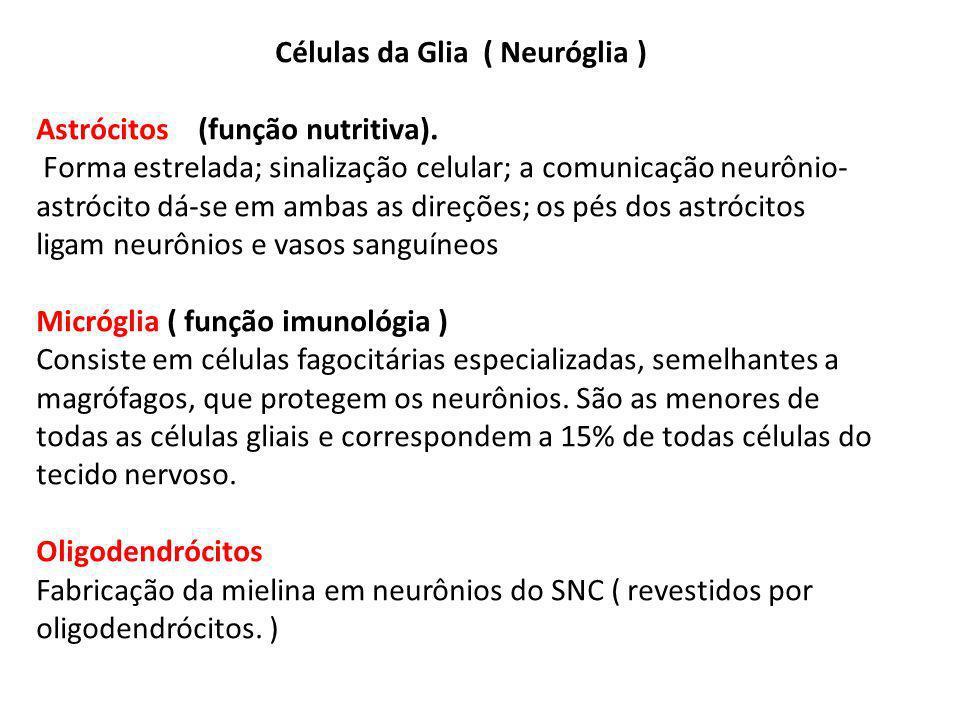 Células da Glia ( Neuróglia )