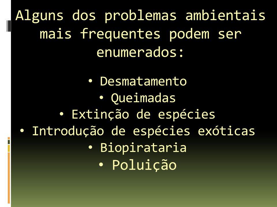 Alguns dos problemas ambientais mais frequentes podem ser enumerados: