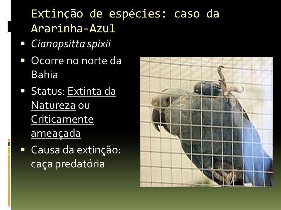Extinção de espécies: caso da Ararinha-Azul