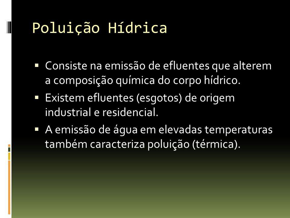 Poluição Hídrica Consiste na emissão de efluentes que alterem a composição química do corpo hídrico.