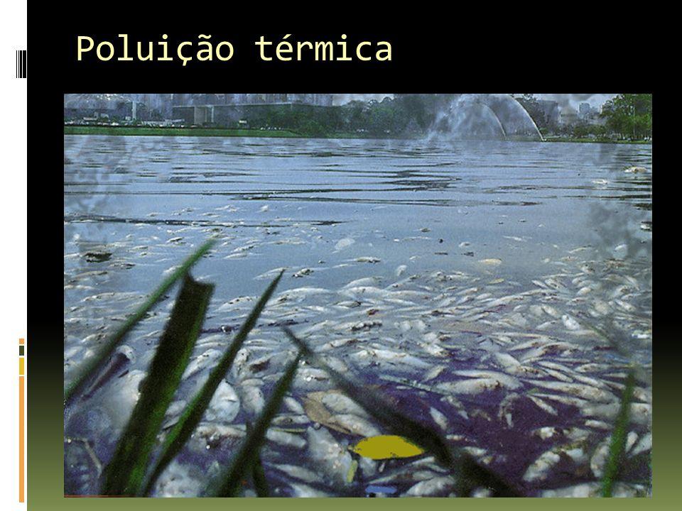 Poluição térmica
