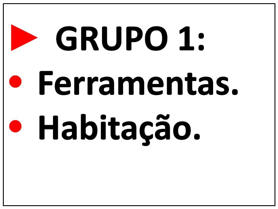 ► GRUPO 1: • Ferramentas. • Habitação.