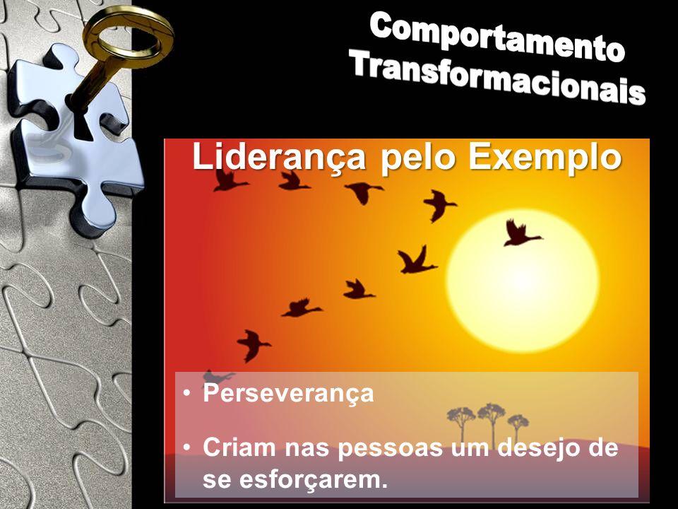 Comportamento Transformacionais