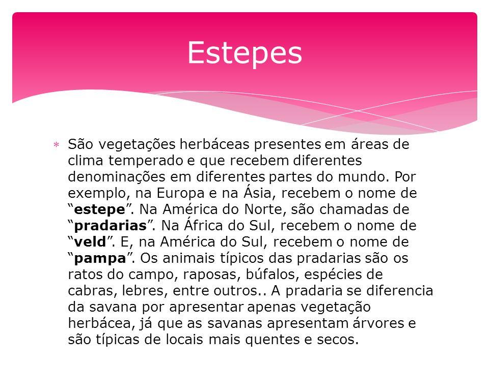 Estepes