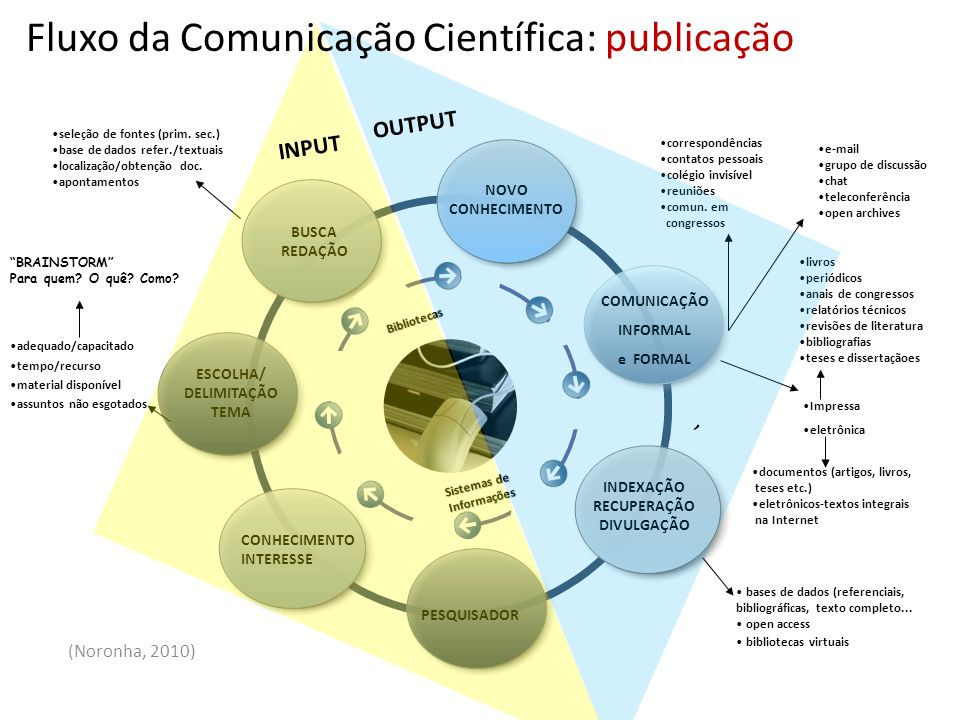 Fluxo da Comunicação Científica: publicação