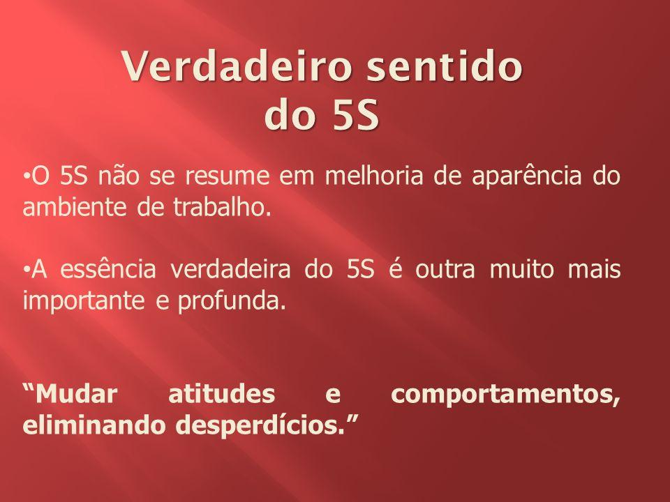 Verdadeiro sentido do 5S
