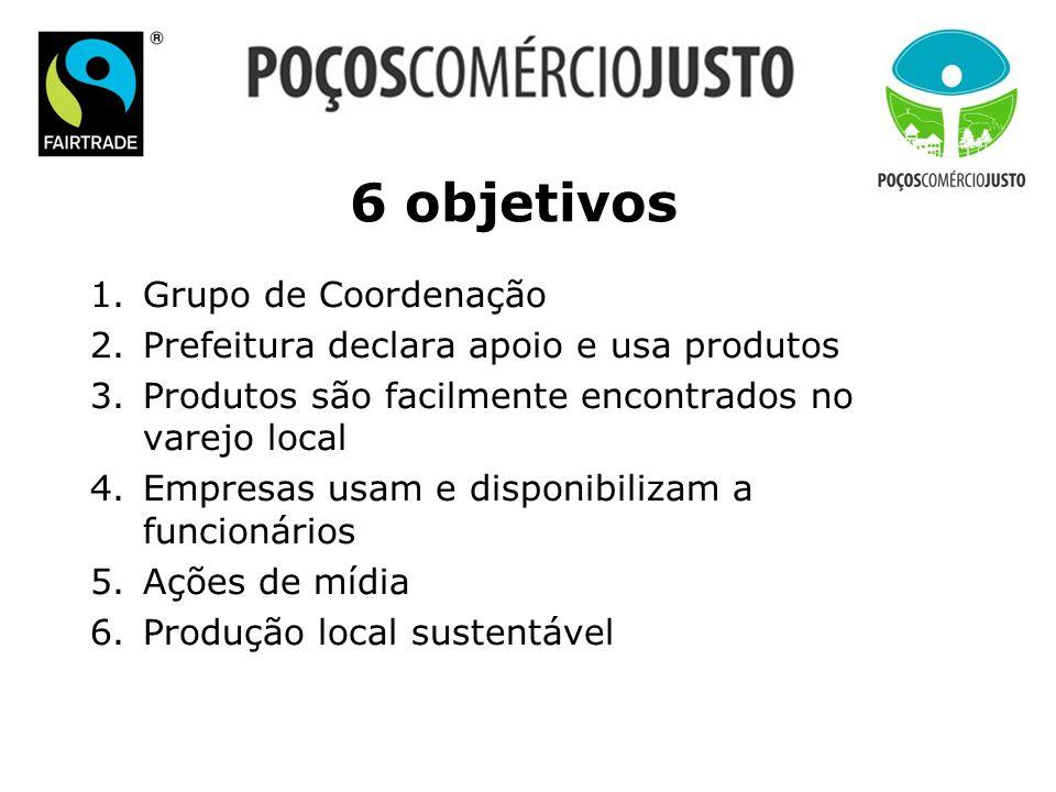 6 objetivos Grupo de Coordenação