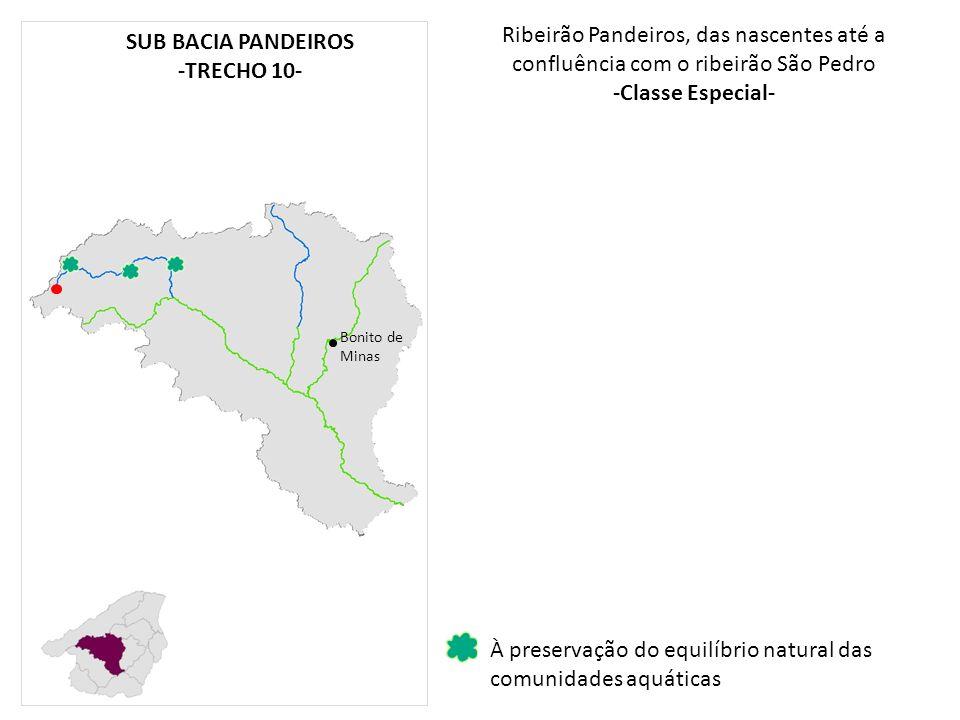 -Classe Especial- SUB BACIA PANDEIROS -TRECHO 10-
