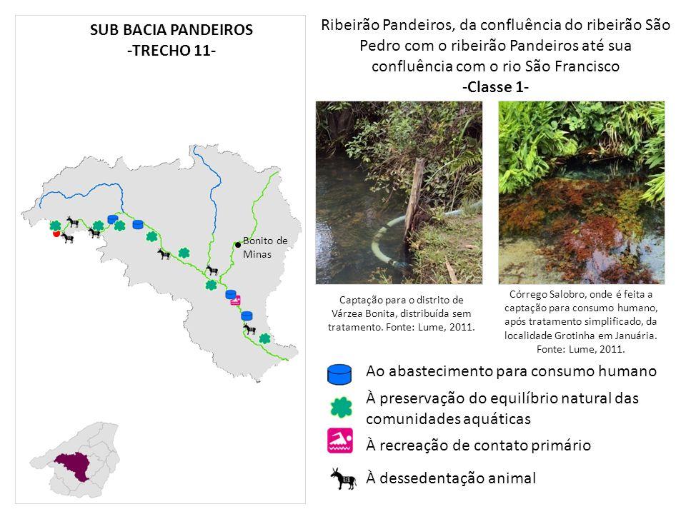 -Classe 1- SUB BACIA PANDEIROS -TRECHO 11-