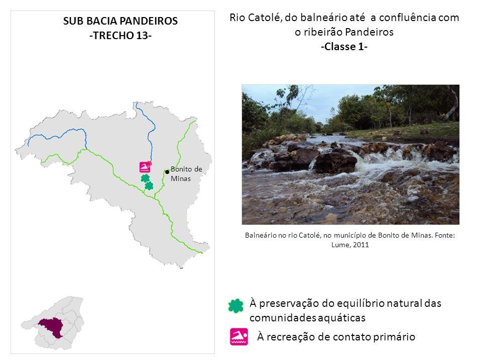 Rio Catolé, do balneário até a confluência com o ribeirão Pandeiros