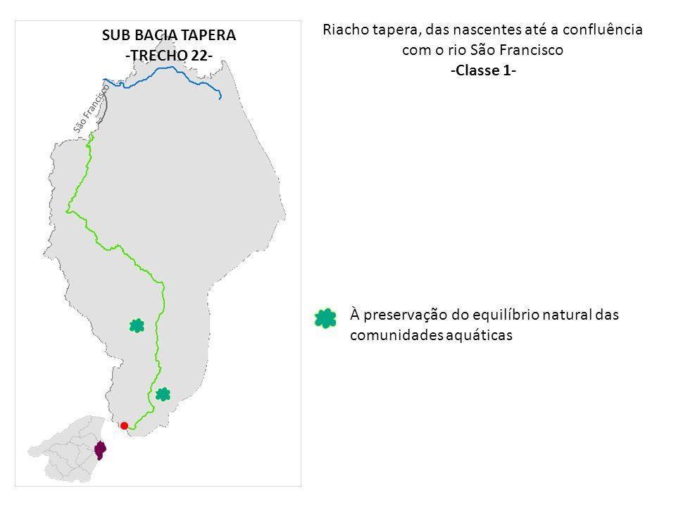 Riacho tapera, das nascentes até a confluência com o rio São Francisco