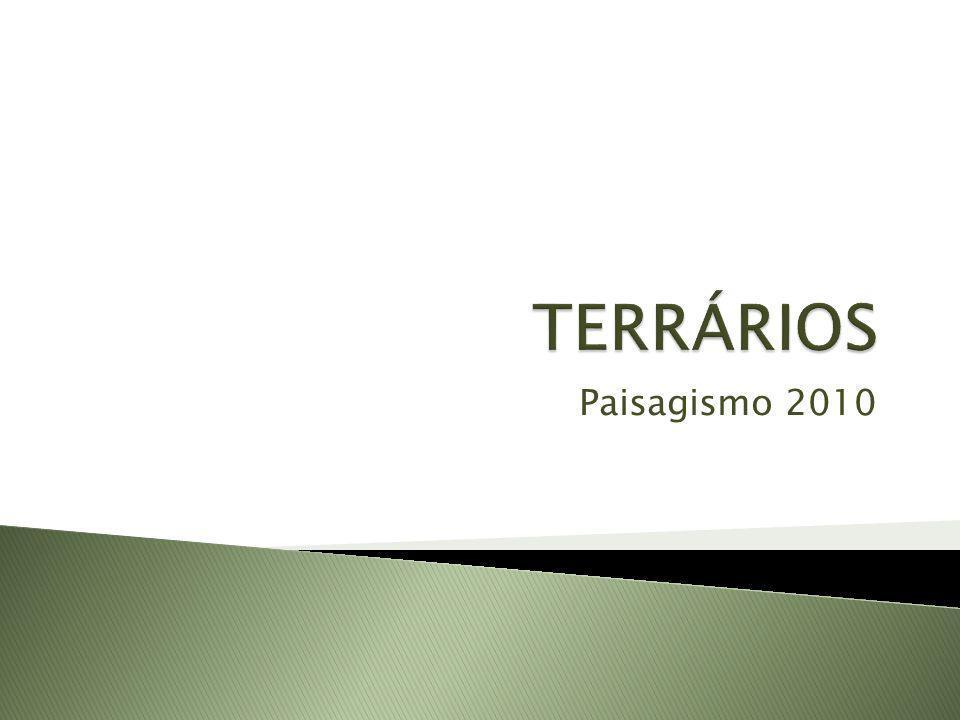 TERRÁRIOS Paisagismo 2010