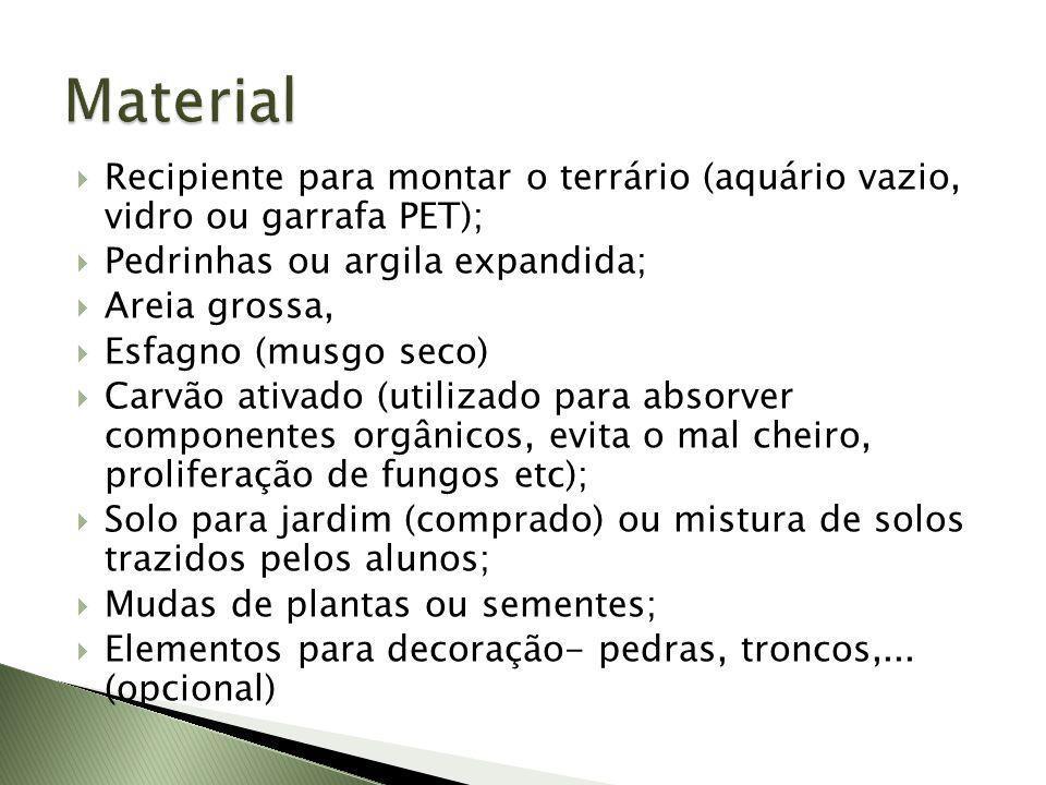 Material Recipiente para montar o terrário (aquário vazio, vidro ou garrafa PET); Pedrinhas ou argila expandida;