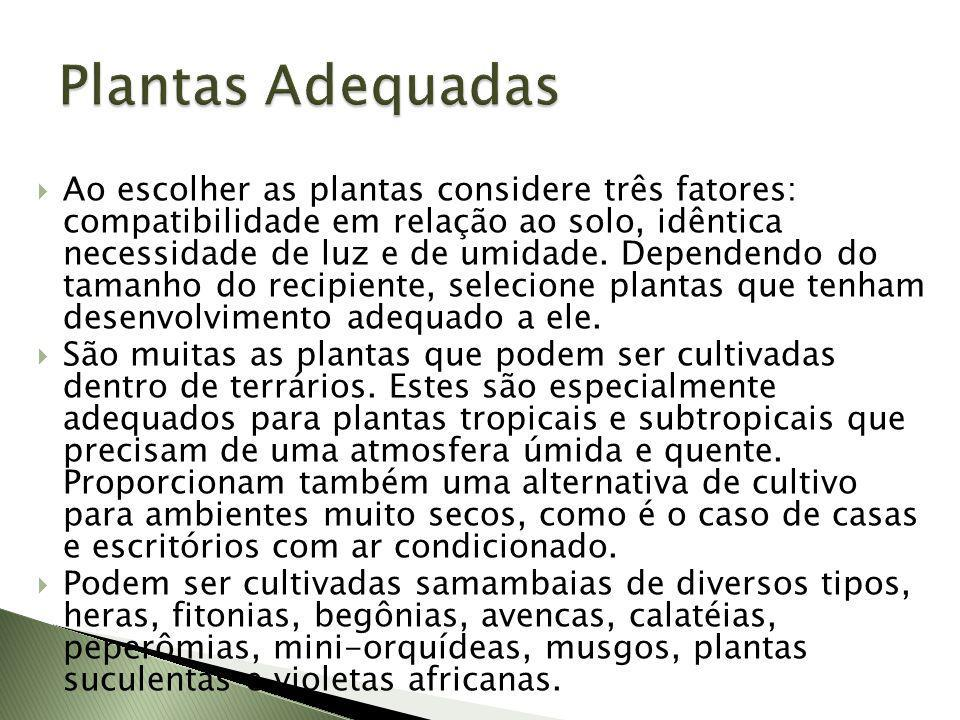 Plantas Adequadas