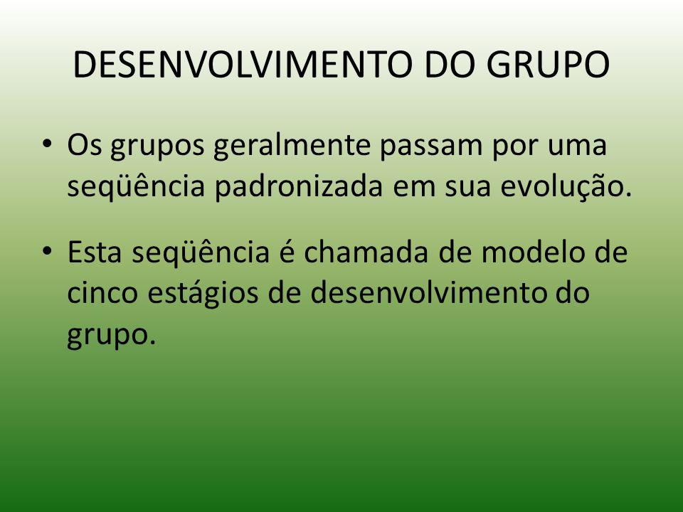 DESENVOLVIMENTO DO GRUPO