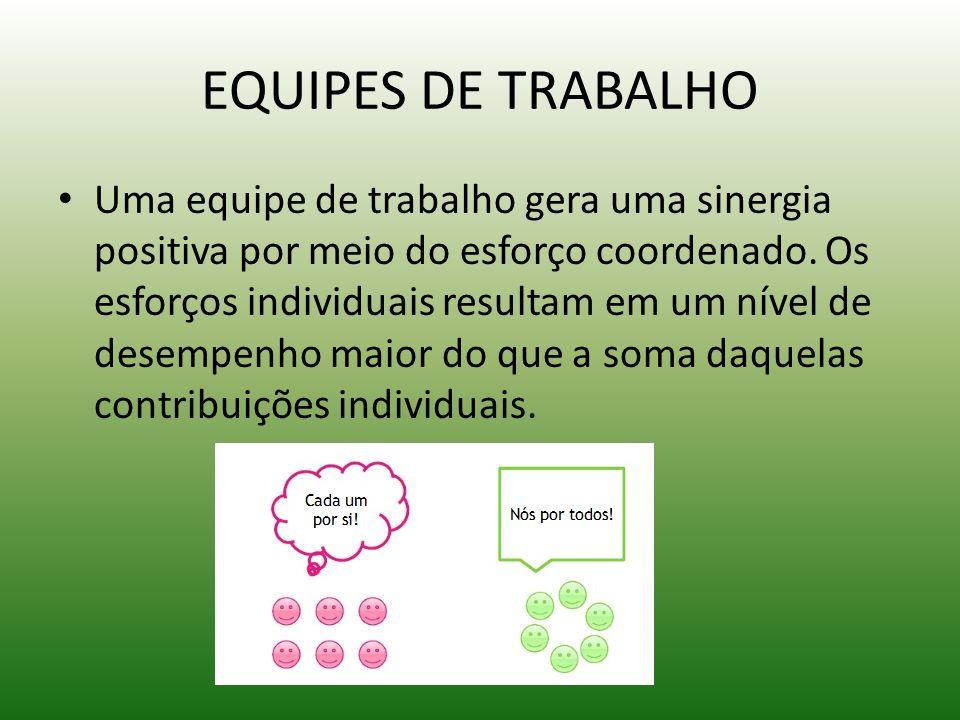 EQUIPES DE TRABALHO
