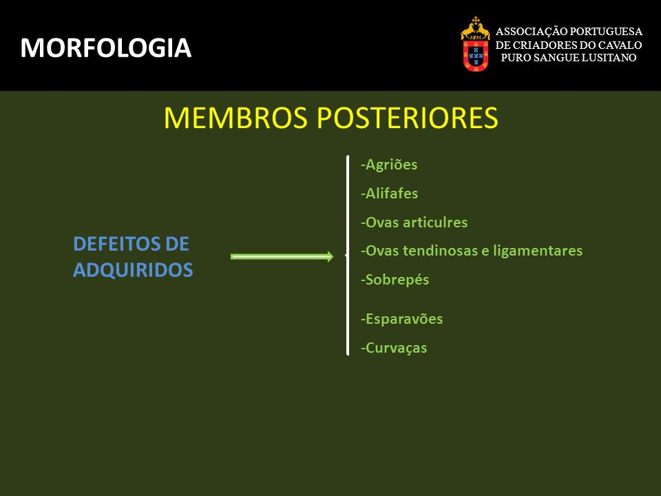 MEMBROS POSTERIORES MORFOLOGIA DEFEITOS DE ADQUIRIDOS -Agriões
