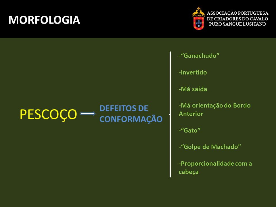 PESCOÇO MORFOLOGIA DEFEITOS DE CONFORMAÇÃO - Ganachudo -Invertido
