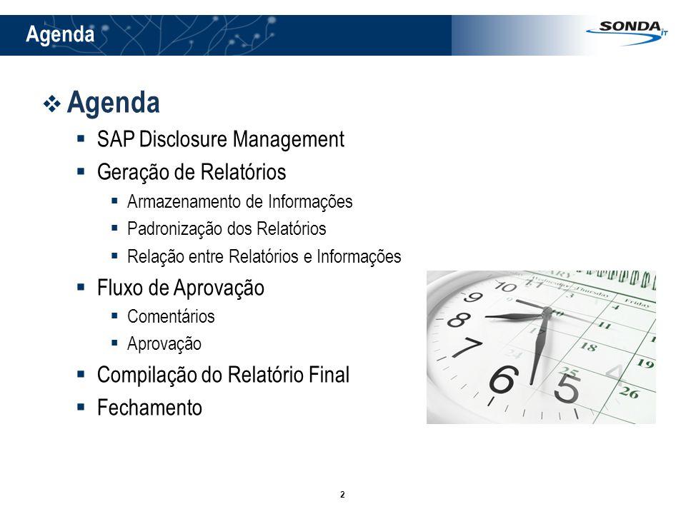 Agenda Agenda SAP Disclosure Management Geração de Relatórios