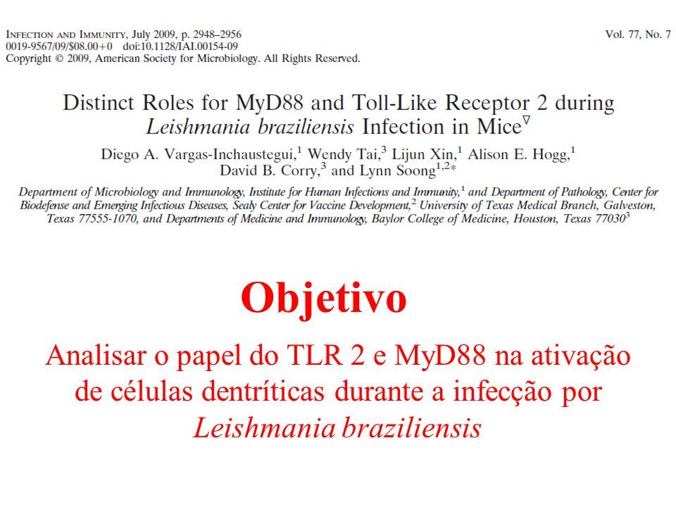 Objetivo Analisar o papel do TLR 2 e MyD88 na ativação de células dentríticas durante a infecção por Leishmania braziliensis.
