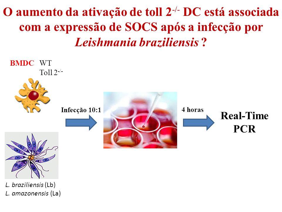 O aumento da ativação de toll 2-/- DC está associada com a expressão de SOCS após a infecção por Leishmania braziliensis
