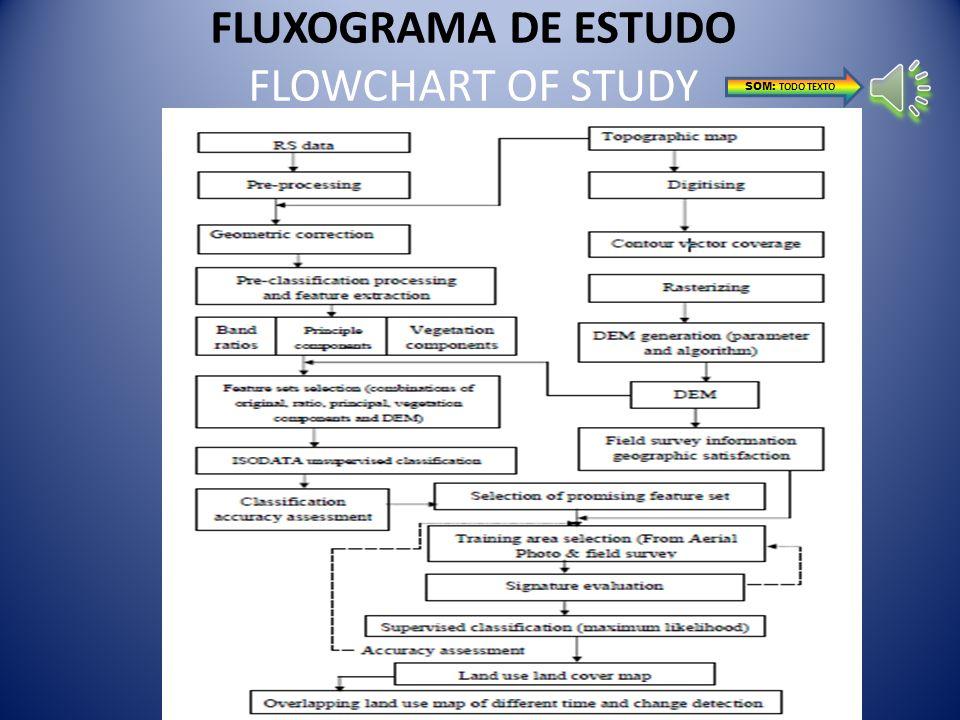 FLUXOGRAMA DE ESTUDO FLOWCHART OF STUDY