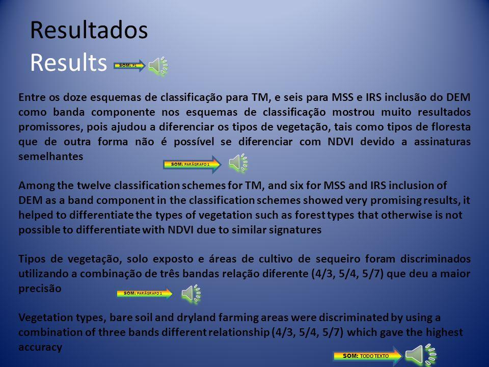 Resultados Results SOM: P1.
