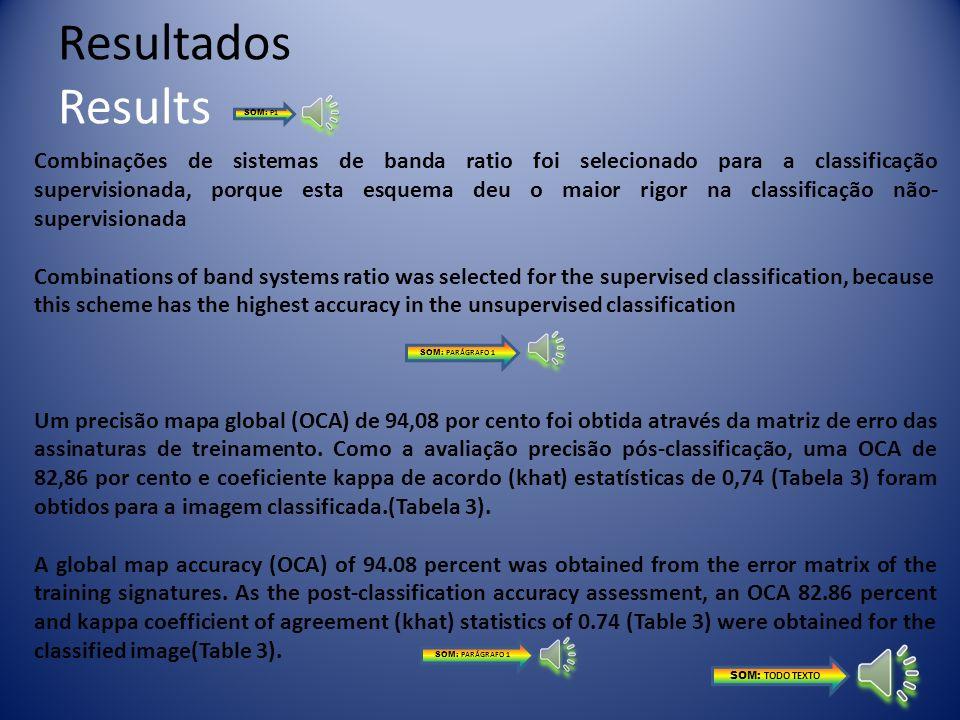 Resultados ResultsSOM: P1.