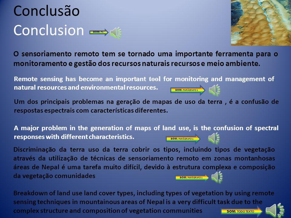 ConclusãoConclusion. SOM: P1.
