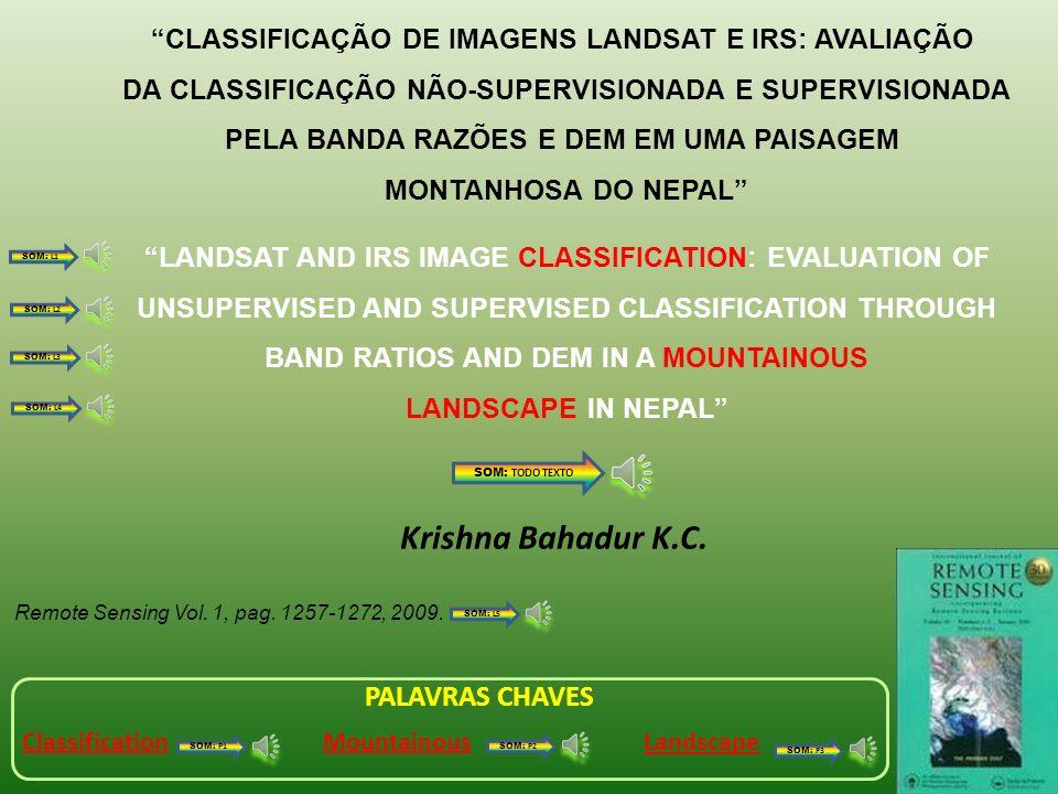 CLASSIFICAÇÃO DE IMAGENS LANDSAT E IRS: AVALIAÇÃO