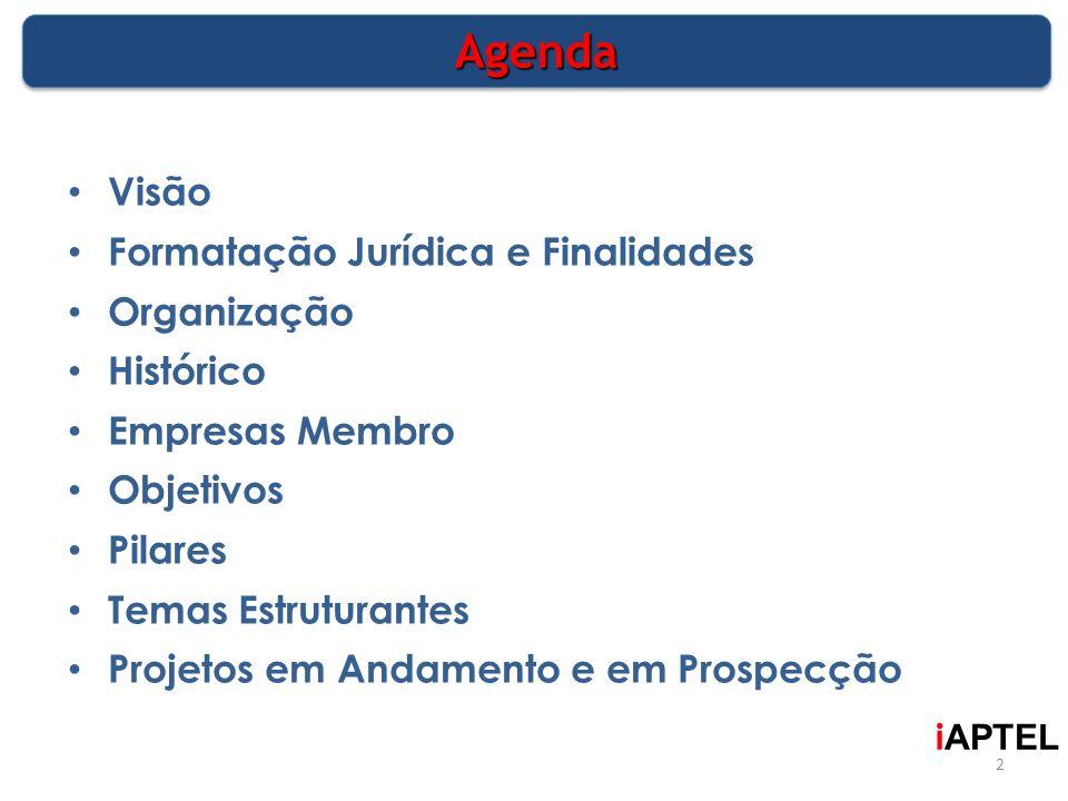 Agenda Visão Formatação Jurídica e Finalidades Organização Histórico