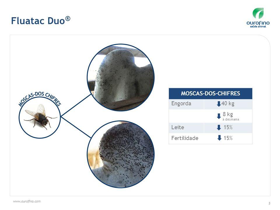 Fluatac Duo® MOSCAS-DOS-CHIFRES Engorda 40 kg 8 kg Leite 15%