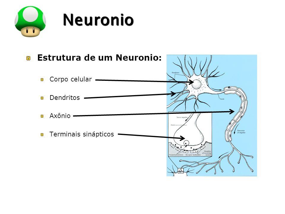 Neuronio Estrutura de um Neuronio: Corpo celular Dendritos Axônio