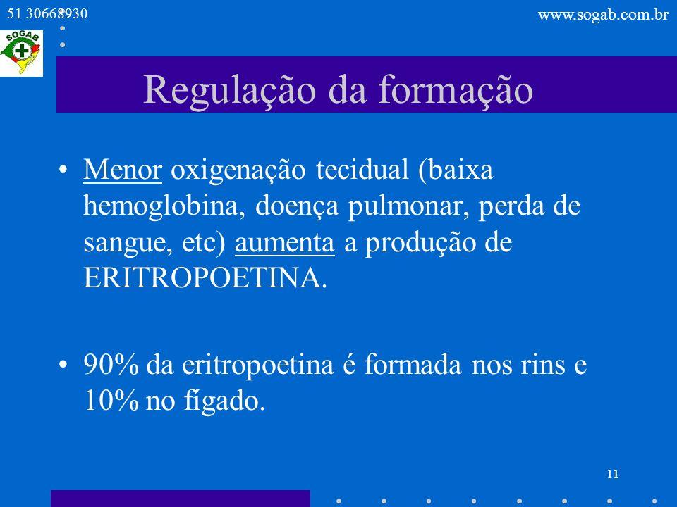 Regulação da formação Menor oxigenação tecidual (baixa hemoglobina, doença pulmonar, perda de sangue, etc) aumenta a produção de ERITROPOETINA.