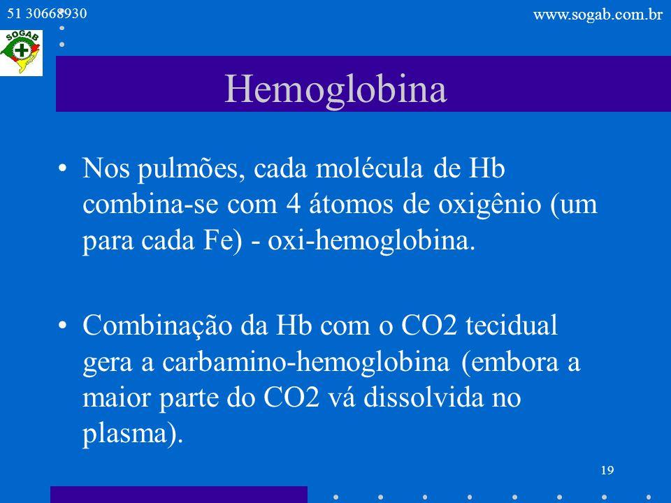Hemoglobina Nos pulmões, cada molécula de Hb combina-se com 4 átomos de oxigênio (um para cada Fe) - oxi-hemoglobina.
