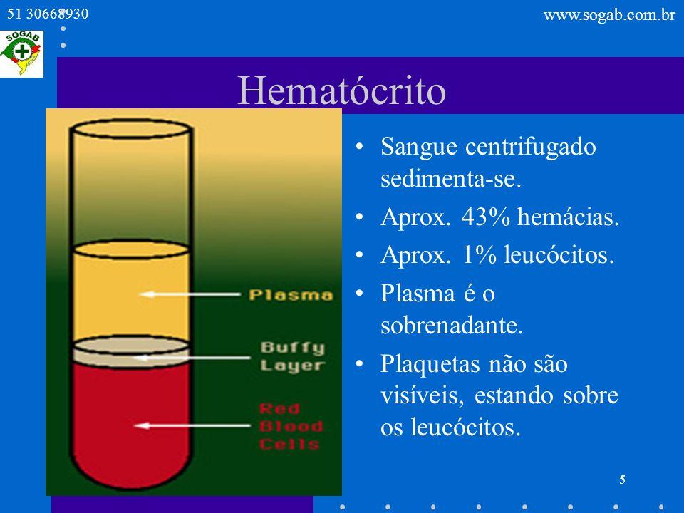 Hematócrito Sangue centrifugado sedimenta-se. Aprox. 43% hemácias.